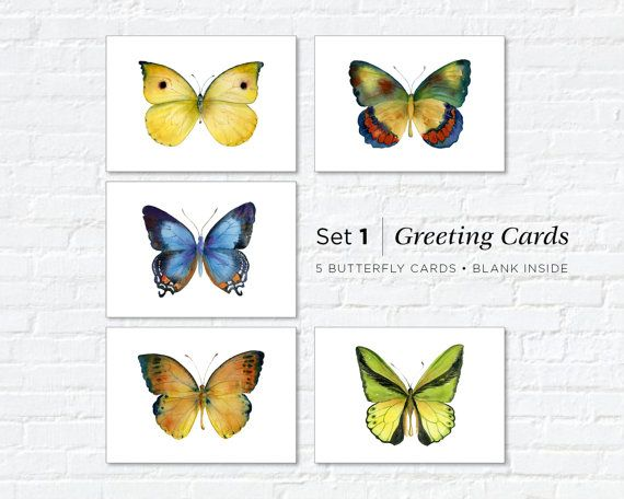Watercolor Butterfly Greeting Cards Set 1 by AmyKirkpatrickArt