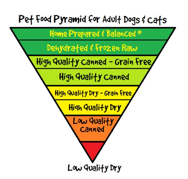 72 Best Food Pyramids Images On Pinterest Ecological