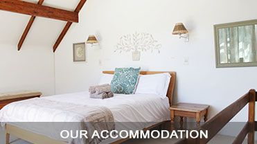 Kid-friendly, lots of accomodation options (big groups, just us) in Stanford | Stanford Hills Estate