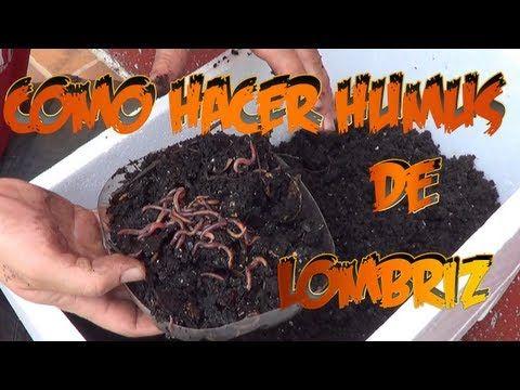 Como Hacer Humus De Lombriz || Abono Organico || La Huertina De Toni