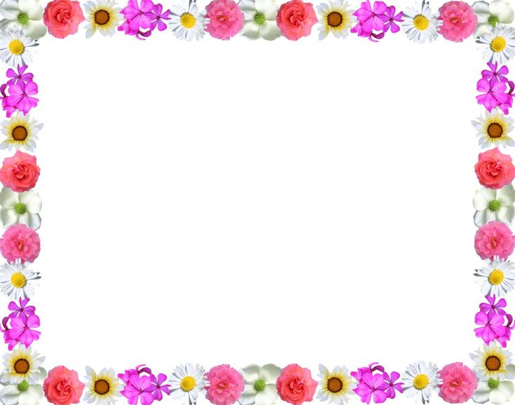 pictures of flowers borders