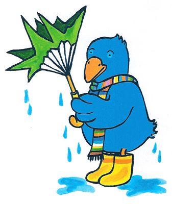 Raai regen