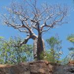 Lancelin Tourism and Travel: Best of Lancelin, Australia - TripAdvisor