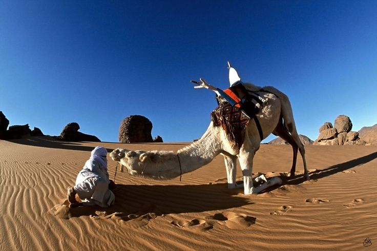 Tuareg-and-his-Camel-Tassili-des-Ajjers-in-Algeria-Photography-60-cm-x-90-cm-2001