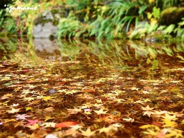 星のや 京都@嵐山