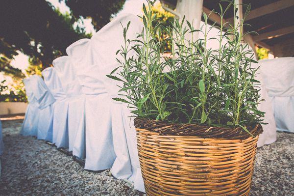 στολισμος γαμου με αρωματικα φυτα