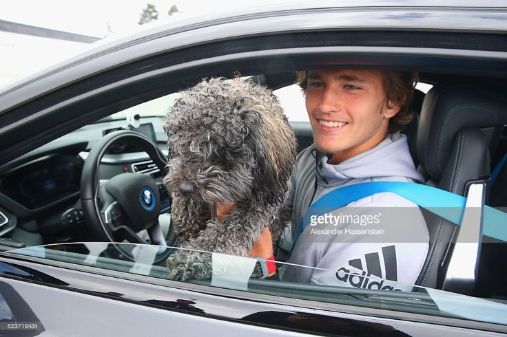 Alexander Zverev of Germany jokes with his dog Loewik after his BMW DrivingExperience in a BMW i8 at BMW driving academy Maisach ahead of the BMW Open at Iphitos tennis club on April 24, 2016 in Munich, Germany.