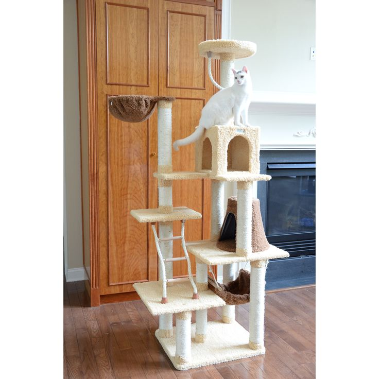 Charming Eco Friendly Pet Furniture For Your Furry Friends: Best 25+ Cat Condo Ideas On Pinterest