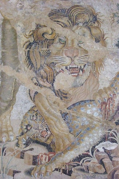 "Mosaic of a Lion and a Leopard from the ""House of the Doves"" in Pompeii, I century bc/I century CE, now in the Archaeological Museum of Naples"