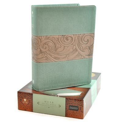 HCSB Study Bible, Black Genuine Leather Indexed