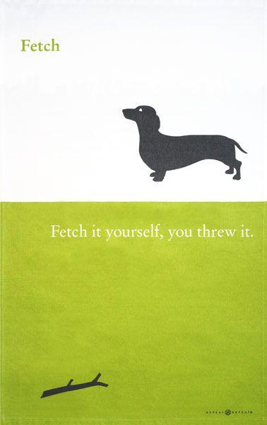 so true. now I know why my dog wont play fetch