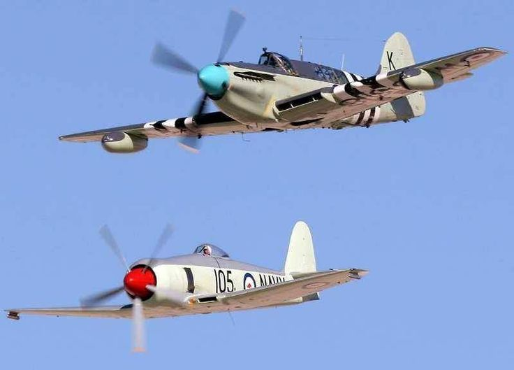 Hawker Sea Fury and a Fairey Firefly