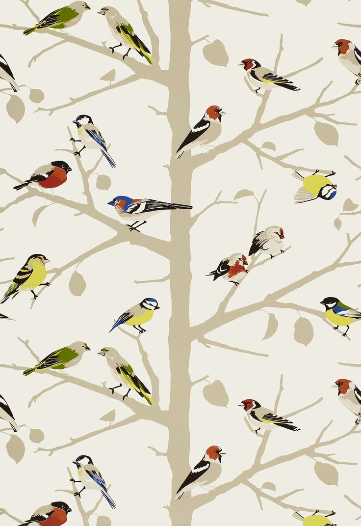 Bird wallpaper for small spaces. Schumacher./
