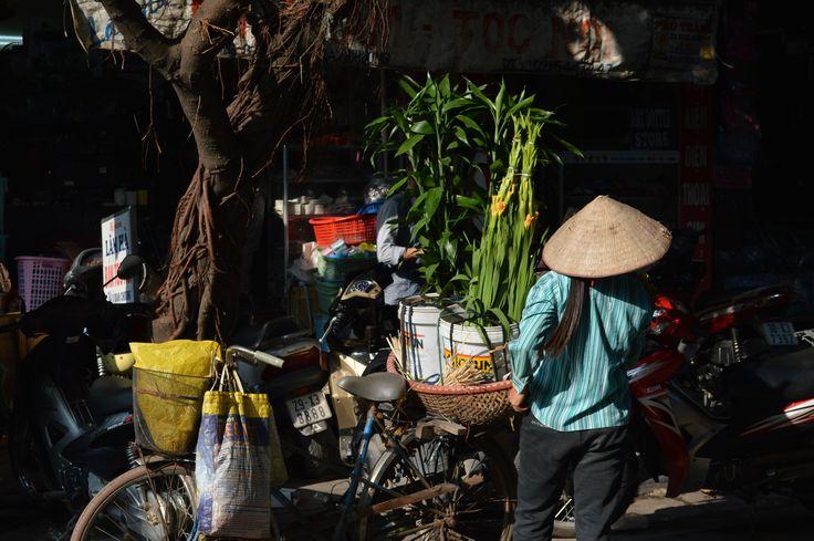 In een drukke straat verkoopt deze vrouw planten, met de fiets. In de winkelstraatjes van Hanoi kijk je je ogen uit. http://www.pimenjiska.nl/eten-in-hanoi