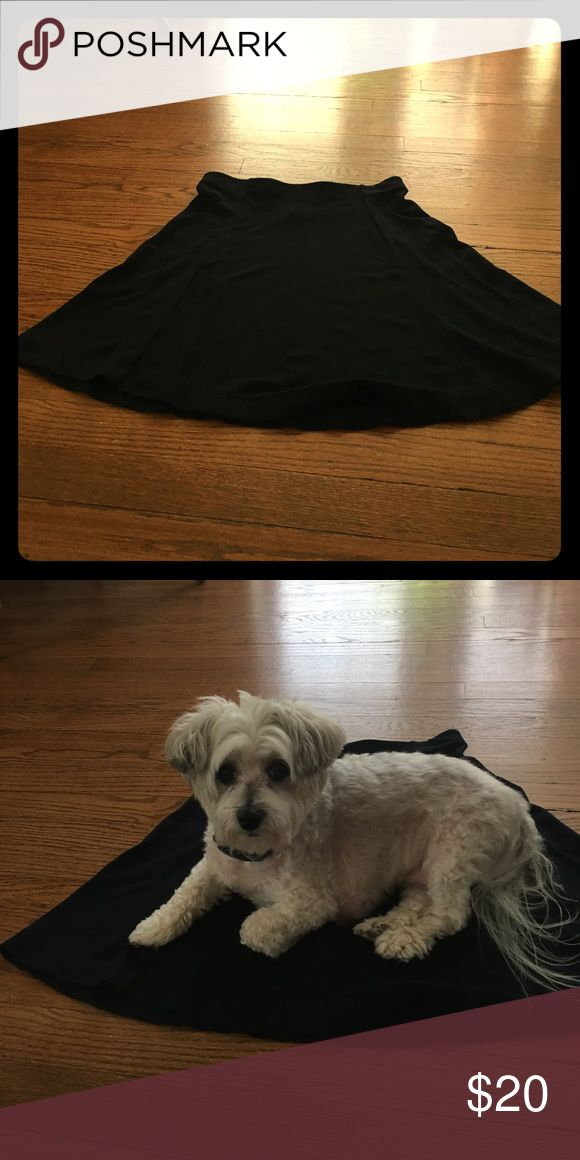 Navy blue A-line uniqlo skirt Fits a 28-29 inch waist, rayon, nylon, spandex mix. My dog wanted to get in on the fun! Don't worry she's hypoallergenic Uniqlo Skirts A-Line or Full