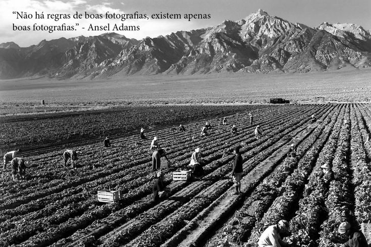 Frases de Fotografia Ansel Adams Trabalhadores