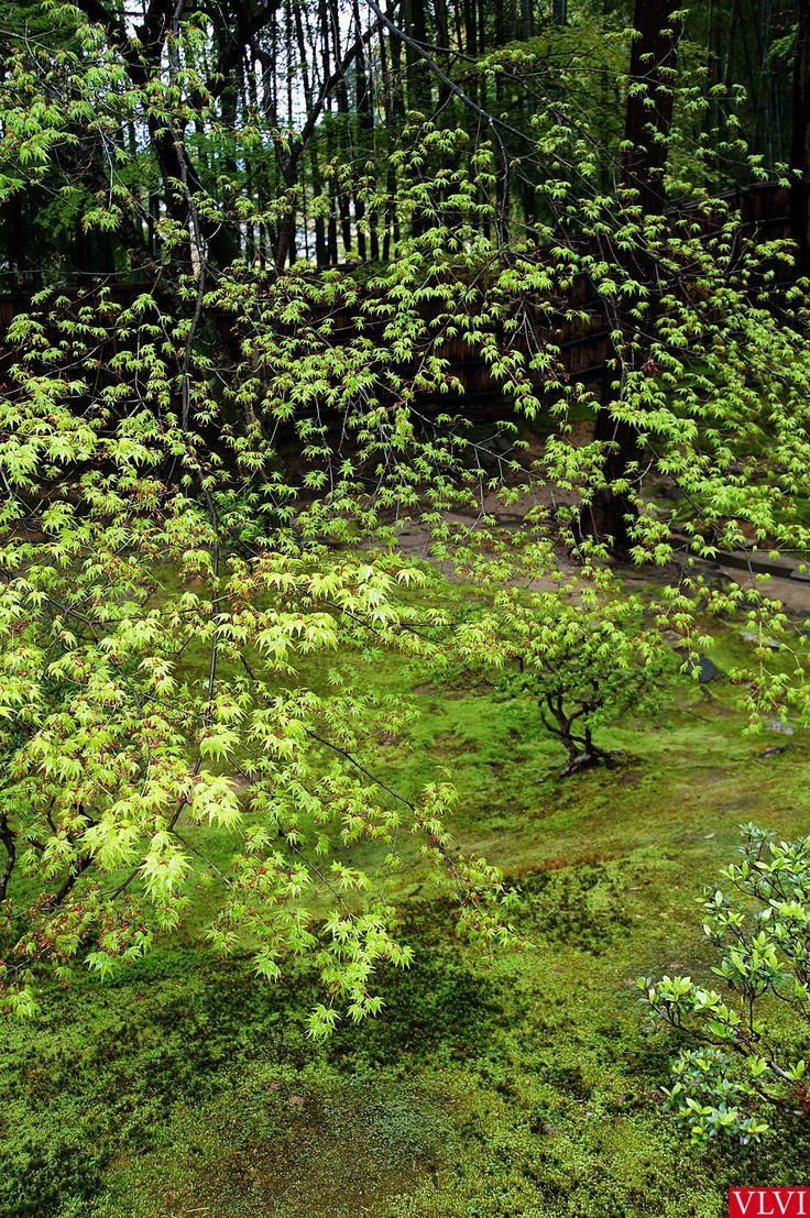 Kyoto Garden, april 2015