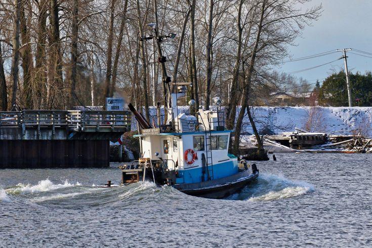 """Hodder Tugboat Co. Ltd.'s tugboat """"RIVER STAR"""" navigates the North Arm of the Fraser River. Click image to enlarge."""
