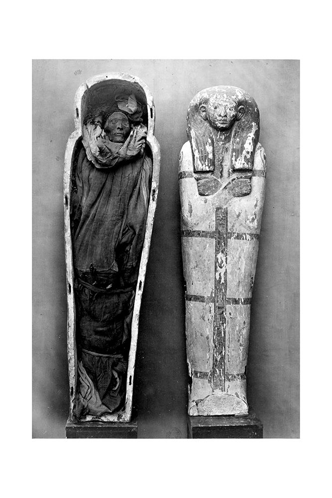 mummy case of paankhenamun Learn nonwestern art with free interactive flashcards choose from 59 different sets of nonwestern art flashcards on quizlet.