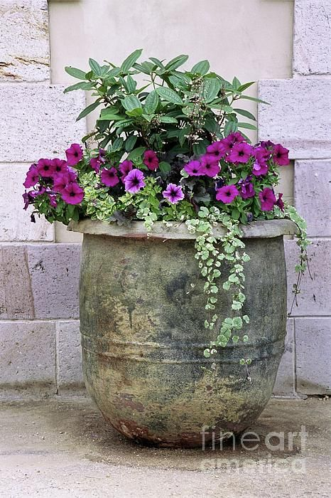 large flower pot idea