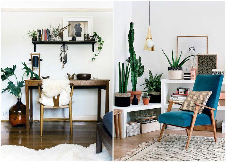 Комнатные растения – прекрасный декор для просторной гостиной  #растения #цвет #дом #уют #декор