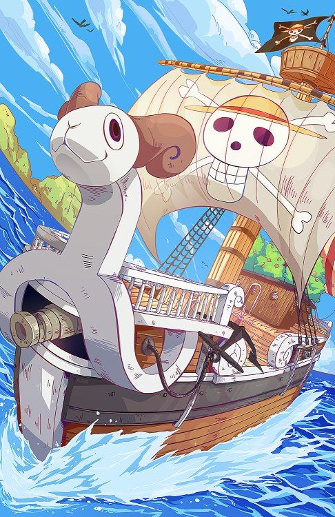 One Piece, Going Merry