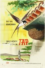 Resultado de imagem para antigos cartazes da TAP