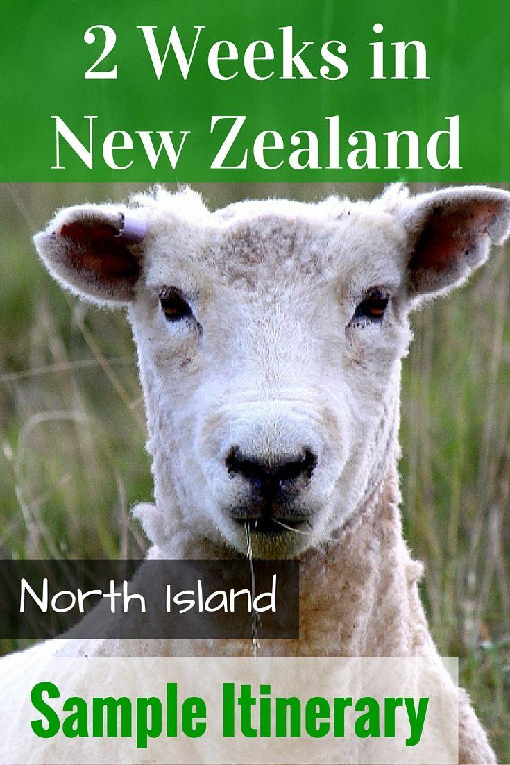 2 Weeks in New Zealand North Island: Sample Itinerary - FreeYourMindTravel