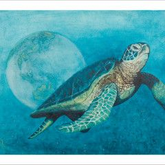 Mother Earth Turtle
