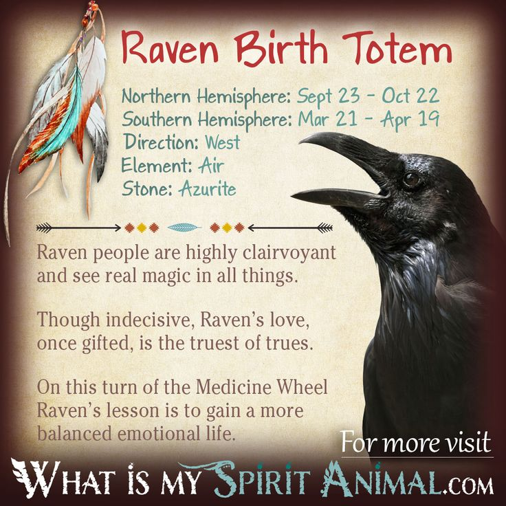 100 Best Totems Spirit Animals Symbolism Images On Pinterest