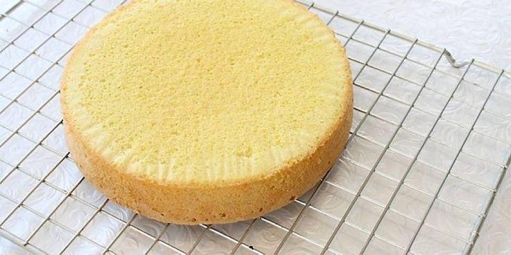 SUKKERBRØD: Når sukkerbrødet blir høyt og luftig er det lett å lage kake. Foto: Elin Vatnar Nilsen