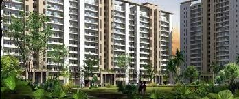 Rent in ILD Spire Greens providing architecturally sound residencies at most affordable rates. This project perfectly situated at Sector 37C Gurgaon. This project location closer to Mangalam Hospital, Blue Bells School, Khopcha 56 restaurant. The project spread over in 15 acres of land. This project offers you 2 bhk and 3 bhk rental apartments. Source URL: http://www.justprop.com/ILD-Spire-Greens-rent-sector-37c-dwarka-expressway-gurgaon-apartment-rent-3a6-179c4a