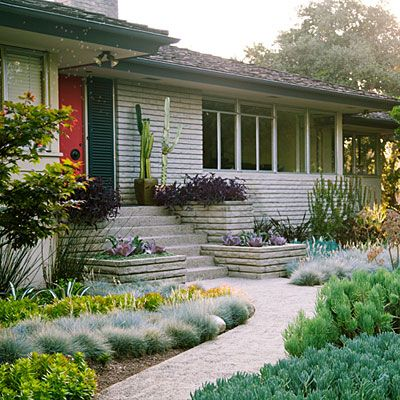 Unthirsty groundcovers organized into bands feature six kinds of succulents, three kinds of shrubs, and one kind of grass that get watered weekly using a drip-irrigation system and need little trimming.