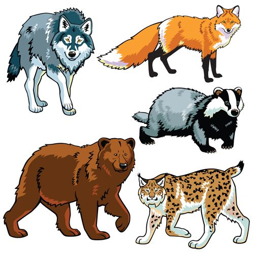 Vector set of wild animals design graphic 01 free