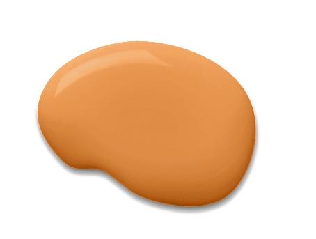 Sherwin-Williams orange paint color – Tango (SW 6649)