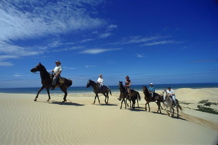 Horse Riding In South Africa - Eastern Cape