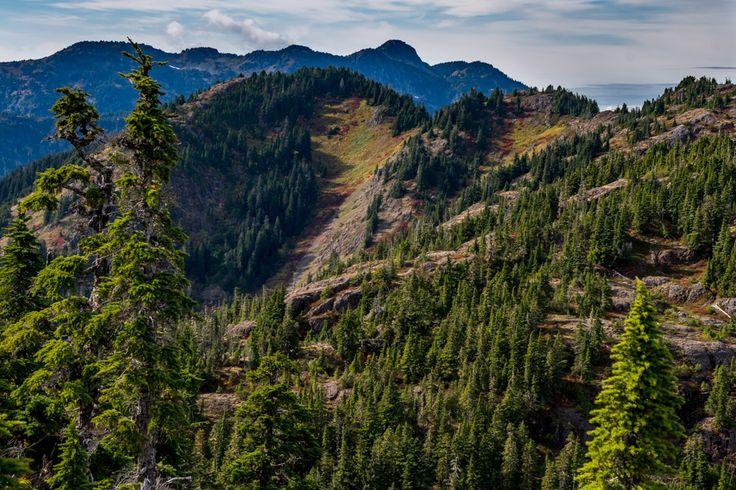 Vancouver Island  Alpine Hiking  www.ChrisIstace.com