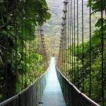 Suspended bridge in Monteverde, Costa Rica