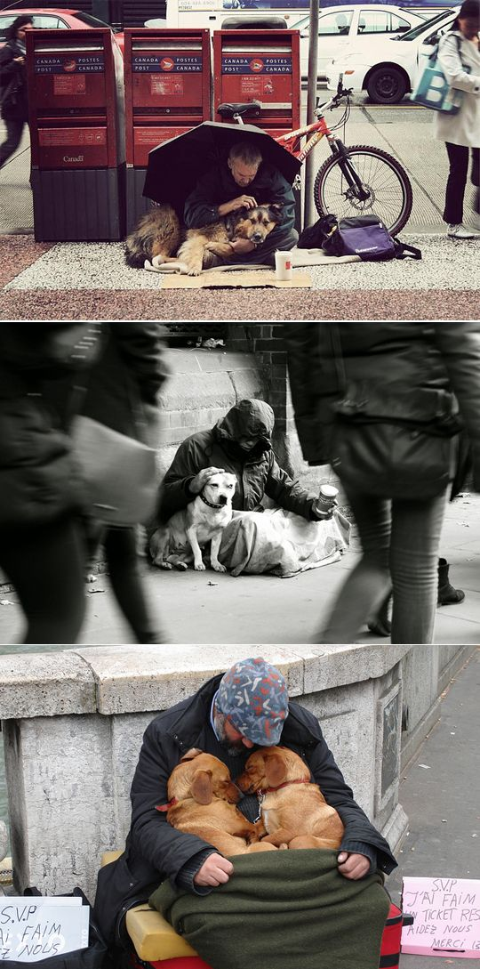 homeless people and their effect on society Understanding how homelessness affects us all space with fellow citizens living in substandard conditions that affect their physical health, mental health there are people who are homeless to help us understand the dimensions of this complex.