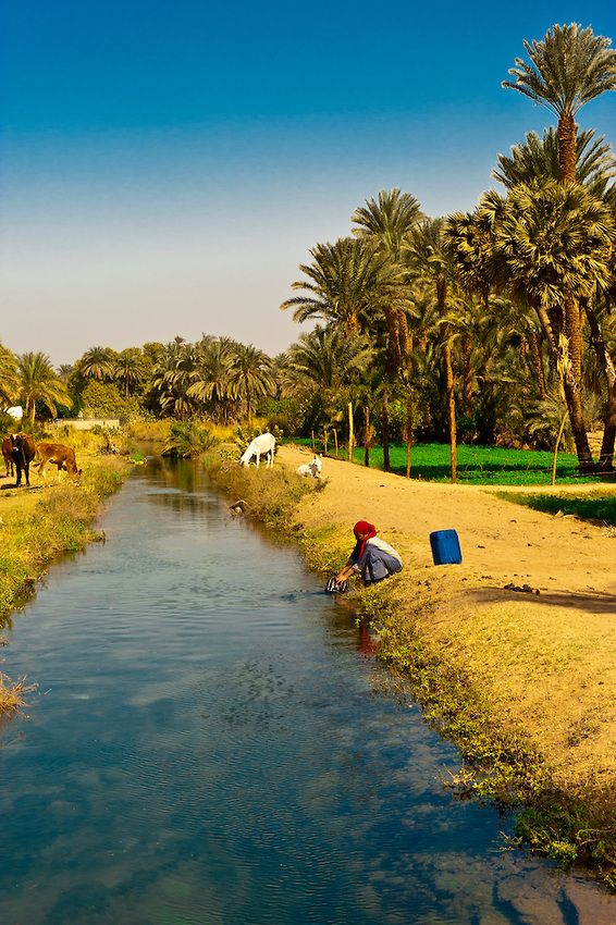 Woman getting water from canal in  a Nubian village near Aswan, Egypt