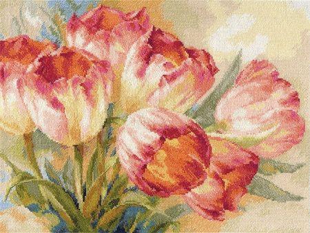 Алиса 2-29 «Тюльпаны»