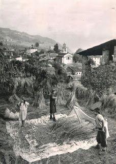 L'AGRICOLTURA DELLA MONTAGNA LOMBARDA NEL PASSATO E LA VITA PAESANA: La campagna e dintorni    #TuscanyAgriturismoGiratola