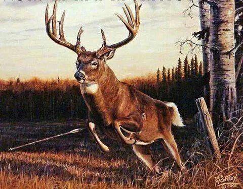 Great Shot Cool Painting Deer Turkey Hunting