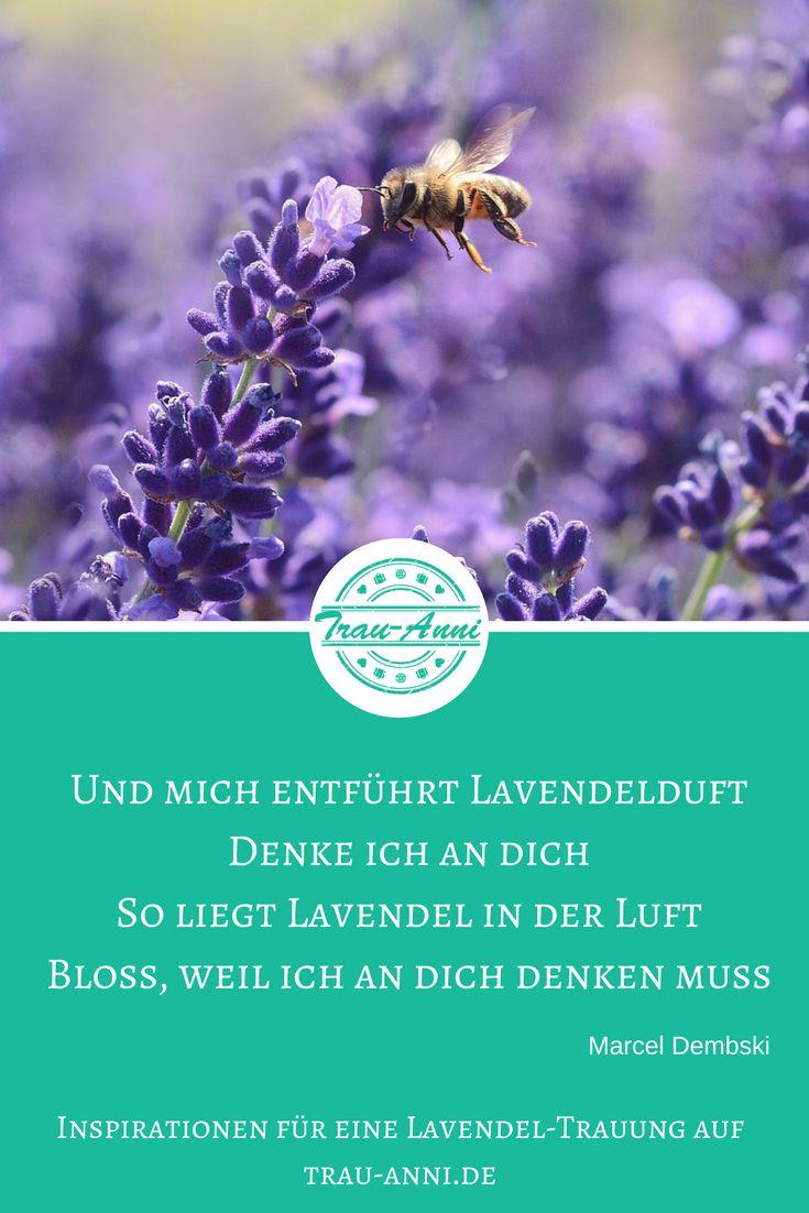 Lavendel ist ein wunderschönes Hochzeitsthema. Lest hier eine Beispiel-Trauung von Trau-Anni