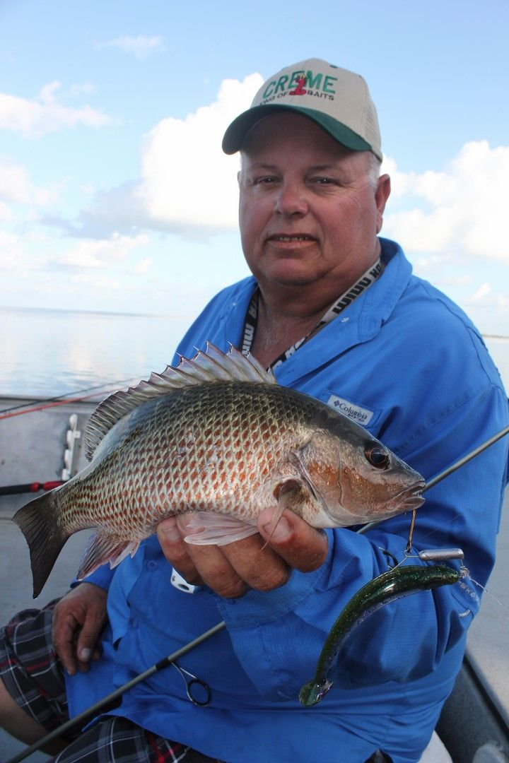 8 best bass fishing with captain dencil powell images on for Best time to fish today