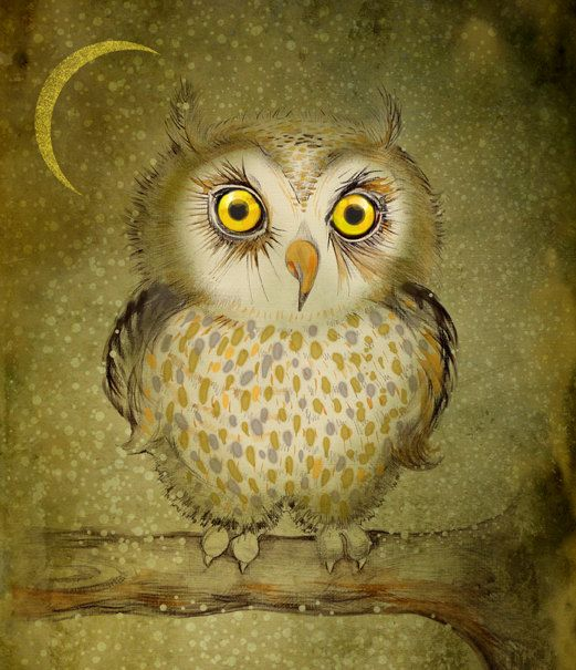 'Little Owl in the Night'  by Stela Doneva