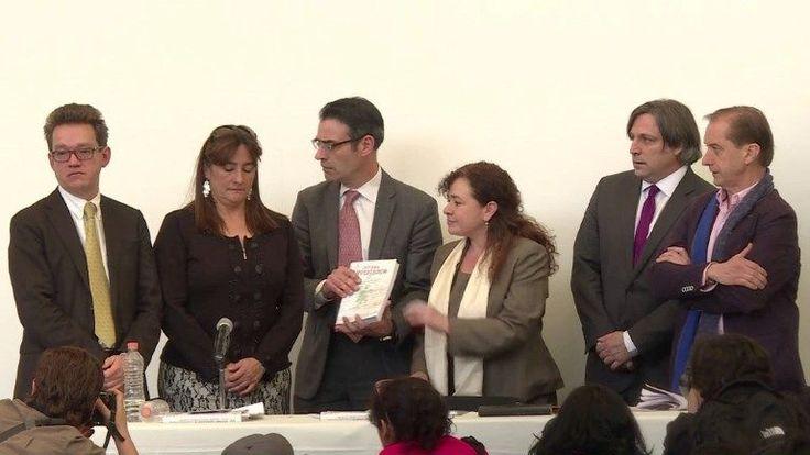 Los expertos de la CIDH que ayudaron a investigar la desaparición de los 43 estudiantes de Ayotzinapa, presentaron este domingo su informe final en el que acusan al gobierno mexicano de obstaculizar su trabajo y cuestionan el papel de las fuerzas federales en la tragedia.