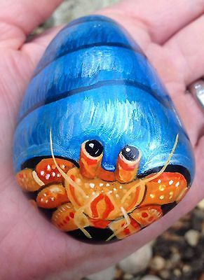 hermit-crab-hand-painted-pebble-rock-ornament-pet-stone-not-to-go-in-fish-tank