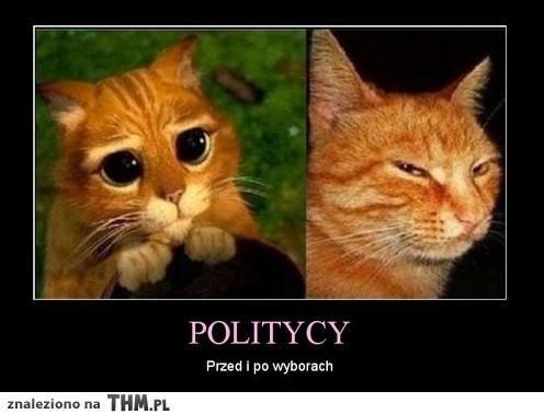 dowcipy o politykach - Szukaj w Google