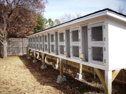 14 best pigeon lofts images on pinterest chicken coops for Pigeon coop ideas